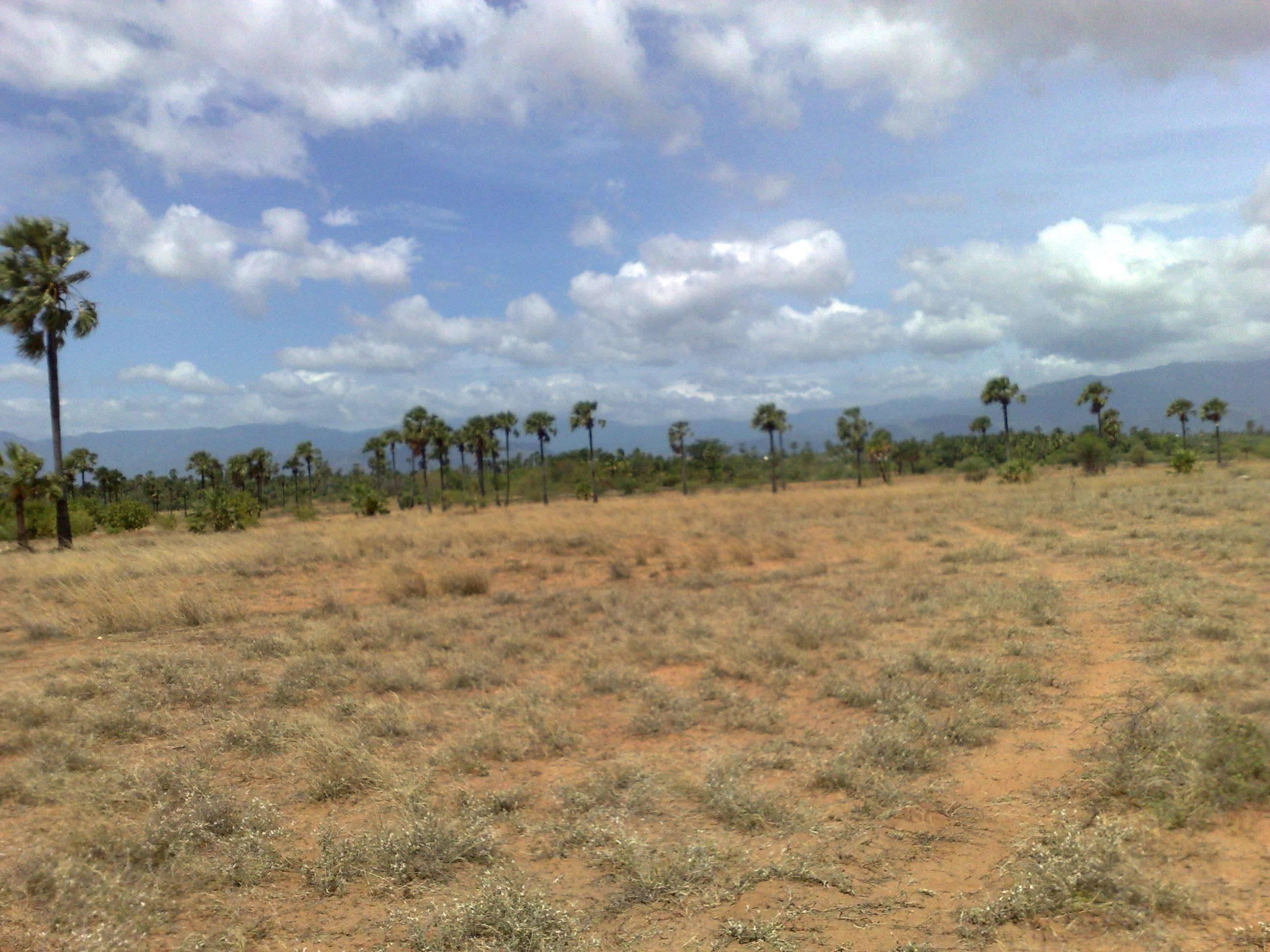 Land For Development Tuticorin Tamil Nadu India 300